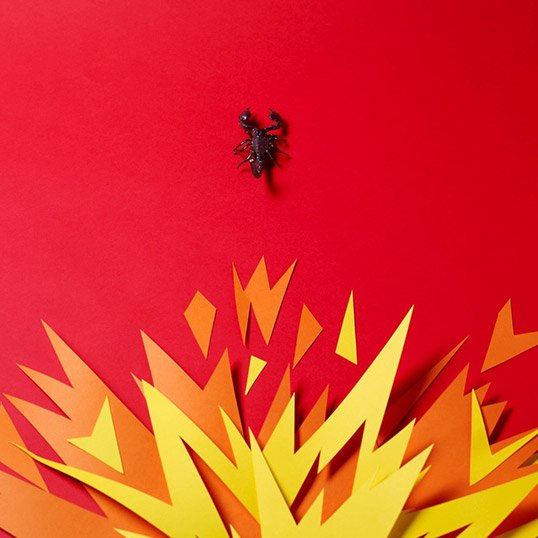 Scorpion-Fire-Paper-Craft